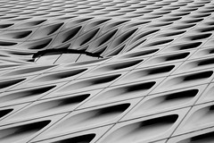 Vortex (rikioscamera) Tags: building dtla samysphotoschool abstract architecture bw blackandwhite d750 design historical lightroom monochrome nikon silverefexpro tour thebroad artmuseum losangeles