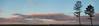 Bulli headland (Mikey Down Under) Tags: beach beaches bulli clouds illawarra northern nsw orange panoramic pine point sandon silhouette southcoast sunset trees wollongong