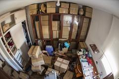 FDT-160 Living in chaos (- Cajón de sastre -) Tags: fdtforlife facedowntuesdaygroup i♥facedowntuesday caos chaos cajas cartonbox boxes movinghouse mudanza hidden escondido escondite hidingplace