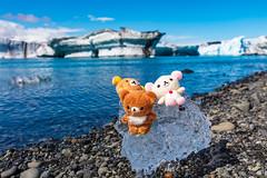 5DS_2655 (賀禎) Tags: iceland 冰島 傑古沙龍冰河湖 jokulsarlon jökulsárlón