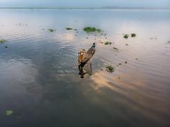 INL-0957 (Kwakc) Tags: inle lake myanmarburma travelphoto aerial photo shan mm inlelake