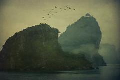 Morning I (juliajjphotography) Tags: halongbay birds fog mist mountain sea vietnam travel journey mood life love happy trip world horizon people embrace dream moody ambient art artistic live smile traveler dreaming