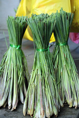 Lemon grass (Cymbopogon citratus) - Mae Klong Railway Market (Talad Rom Hub), Bangkok, Thailand 2018 (Dis da fi we) Tags: vegetables mae klong railway market talad rom hub bangkok thailand lemon grass cymbopogon citratus