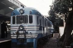 Blue Streak Rm 119 Auckland (Wheel5800) Tags: railcar