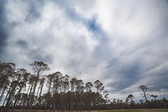 Cloudy Sky - Outer Banks NC (Modkuse) Tags: dramaticsky clouds cloudscape cloudy cloudyday nature wideangle wideanglezoomlens nikon nikondslr nikond700 dslr tokina natural sky skyscape