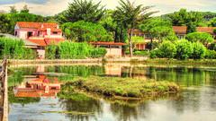 Isola d'Elba :  trovati i laghetti * (argia world 1) Tags: isoladelba elbaisland termedisangiovannielba portoferraio parco park alberi trees residences laghetto pond acqua water riflessi reflections