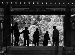 A small pause at the gate (PeterThoeny) Tags: saratoga california siliconvalley sanfranciscobay sanfranciscobayarea southbay hakonegardens japanesegarden garden park gate torii people silhouette peoplesilhouette stairs plants day outdoor monochrome blackandwhite sony a6000 sel50f18 1xp raw photomatix hdr qualityhdr qualityhdrphotography fav100 tree