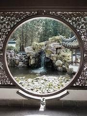 Chinese Garden (sven.ceglarek) Tags: chinesegarden botanicalgarden bochum rub smartphonography s8 samsung galaxy plus
