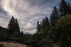 a few favorite things, mountains, clouds, and trees... (Alvin Harp) Tags: bluestarmemorialhwyvistapoint mountshasta july 2018 i15 mountains clouds trees cloudsstormssunsetssunrises sonyilce7rm3 fe2470mmf28gm favoritethings shastanationalforest naturesbeauty nativeland cloudscaping alvinharp