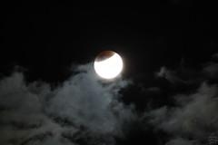 Total Lunar Eclipse (Partial Phase) / @ 300 mm / 2015-09-28 (astrofreak81) Tags: totallunareclipse total lunar eclipse moon luna mond finsternis clouds sky night dresden