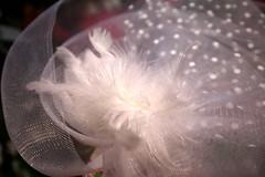 Blanc de white Fascinator (Christian Chene Tahiti) Tags: canon 6d auckland glenfield nature plume ruban raphia paruredetêteblanc white bibi nouvellezélande rubanderaphia fascinator serretête color couleur extérieur macro chapeau dentelle abstrait