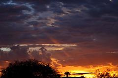 Sunrise 7 21 18 #29 (Az Skies Photography) Tags: sun rise sunrise morning dawn daybreak cloud clouds sky skyline skyscape rio rico arizona az riorico rioricoaz arizonasky arizonaskyline arizonaskyscape arizonasunrise july 21 2018 july212018 7212018 canon eos 80d canoneos80d eos80d canon80d 72118 red orange yellow gold golden salmon black