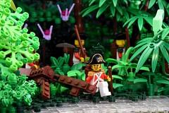Jungle Reflections, Celestia (Ayrlego) Tags: lego brethrenofthebrickseas allcock