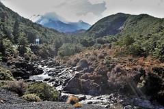 Tongariro National Park, NZ -  Above Mangawhero Falls - View to Mount Ruapehu (zorro1945) Tags: mountruapehu mangawherofalls tongarironationalpark manawatuwanganui northisland nz newzealand stream mountain