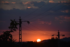 Electrifying Sunset (Mihai Păcurețu) Tags: romania sunset rumanien apus soare sun amurg avion plane airplane orange spring nikon d3400 dslr nikkor urban city sky cer april lowkey flickr 7dwf coth5 trails lines dusk dark reflection outside outdoors light mood atmosphere contrast red readyfortheday black silhouette grass tree animal field cos fum chimney landscape line electricity electrifying