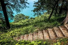 Wrapped up tight again (Melissa Maples) Tags: batumi batum ბათუმი adjara აჭარა georgia gürcistan sakartvelo საქართველო asia 土耳其 apple iphone iphonex cameraphone მწვანეკეპი mtsvanecape ბოტანიკურიბაღი botanicalgarden blacksea sea water staircase steps stairs