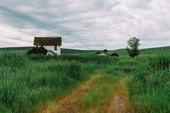 The Old Driveway (Pedalhead'71) Tags: abandoned barn farmhouse homestead landscape palouse rural washington whitmancounty