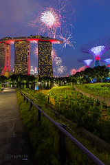 2K-IMG4412-20180809 (-syphrix-) Tags: syphrix singapore national day celebration fireworks season south east asia marina bay sands jubilee bridge pyrotechnic rehearsal travel canon long exposure display river cityscape city famous ndp waterfront 2018 gardens by parade