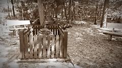 Bruno Brusten (Mein Ruhrgebiet) Tags: brunobrusten bruno brusten dinslaken oberlohbergerwald mariaesser 04august1944 06oktober1918 27märz1945 kanonefutter sohn albertklosterköther bernhardoverländer keilerweg keilerstr kriegsgrab grab holzkreuz soldatenhelm soldat weltkrieg 2weltkrieg sinnlos sterben tod gefallen granate granatensplitter