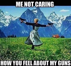 """""""Like"""" if you love your guns and support the Second Amendment. 