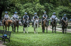 DC Mounted Police prepared for crowd control (Airborne Guy) Tags: rally protest demonstration unitetheright antifa whitehouse washington dc police lawenforcement cops law horses mountedpatrol thinblueline riotgear