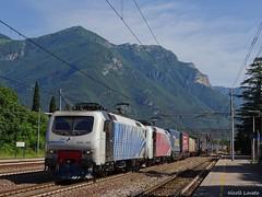 Zebre mattutine (nlovato96) Tags: köln eifeltor verona qe quadrante europa rtc adtranz tec zebra eu43 guterzug brenner brennerbahn rail traction company combinato peri intermodal freight train