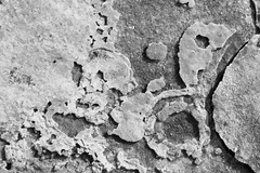 Surrealistic (gripspix (OFF)) Tags: 20180624 rock steine texture textur keuper mesozoic mesozoikum erdmittelalter oberfläche surface constructionarea baustelle sulz germany deutschland cracks risse plaques beläge mineral mineralisch bw schwarzweiss