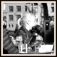 doggy (Jan Herremans) Tags: europe belgium lokeren candid bw do