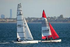 800_4911 (Lox Pix) Tags: queensland qld australia catamaran trimaran hyc humpybongyachtclub winterbash loxpix foilingcatamaran foiling bramblebay sailing race regatta woodypoint boat