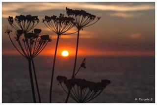 Le soleil se couche sur la Pointe du Grouin