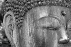 Buddha - Standard (hoobgoobliin) Tags: keithlemon buddha standard enlightenment bw metal batsford arboretum gloustershire cotswolds statue buddhism rob charles fujifilm xf1855