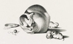 Illustration of domestic cat and three newborn kittens by Gottfried Mind (1768-1814). Original from Library of Congress. Digitally enhanced by rawpixel. (Free Public Domain Illustrations by rawpixel) Tags: animals antique art attention brodtmann caring cats copyspace cute domestic drawing etching feline food gottfried gottfriedmind illustrated illustration interested joseph kittens lithograph looking mammal mind mother name newborn old paying pet playful pussycat saucer sketch three toys vintage woolrope