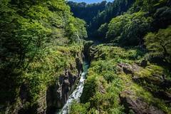 高千穂② (abk10002) Tags: japan green miyazaki takachiho landscape α7 zeiss