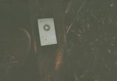 005.jpg (Tai Moura) Tags: kodak film filme 35mm proimage 100 trip100r olympus olympustrip100r lomo lomography lomografia