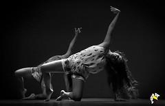 Mi Clamor (Marcelo Seixas) Tags: espaçodedançasbaillare baillare dancing gold beautiful imigração venezuelana miclamordance art bravo best arte passo performace balance artistic woman star show apresentação boavista roraima espetáculo students palco perfect perfeito perfeição musculos muscles young jovem dança danze danza tanz tones tons surreal wow canon girl love people balletmoderno ballo balé bailariana bailarino ballerino balet baletka baletki baletky balletslippers ballerinas balett balerina ballerina ballet descalça descalza piedsnus piedinudi scalza barefoot decalza pieds pidi