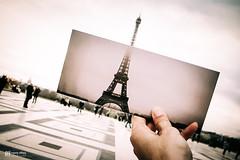 This City, Paris | 14 (euyoung) Tags: 2009 europe feb france grd paris ricoh 艾菲爾鐵塔