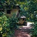 a tropical home...Kerala!