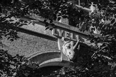 Lyell (__KJ__) Tags: architecture university virginia charlottesville jefferson rotunda grounds academical village historical history campus