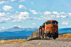 RR-20180621-JointLine-31 (skyviewtim) Tags: bnsf6125 coalload coloradorailroads coloradotrains uptrain castlerock colorado unitedstates us