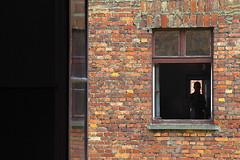 finestra (enrico sprea) Tags: finestra costruzione mattoni building figura persona ombra vetri caserma auschwitz1 oswiecim polonia poland ininterni pentaxlife campodiconcentramento campodisterminio campodilavoro ebrei nazisti guerra prigionieri internati baracche morte torture sofferenze fascismo nazismo nazifascismo sterminio hitler germania tedeschi soluzionefinale gente turisti memoria ricordo visita shoah storia olocausto antisemitismo auschwitz recinto prigionia deportazione oświęcim poloniameridionale 19401945 edificio persone muri konzentrationslager