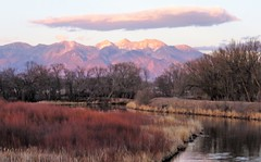 Alpenglow (Patricia Henschen) Tags: alamosacolorado sunset blanca mountain peak alamosa colorado town clouds sangredecristo mountains wetland reflection alpenglow winter reflections stateavenue bridge riogrande river riogranderiver rural levee group
