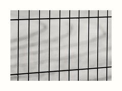 Fenced in running track... (zapperthesnapper) Tags: fence runningtrack minimal blackandwhite mono monochrome monochromatic simple