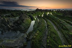 Green Dragon IV. (Ernest Bech) Tags: euskadi paisvasco vizcaya barrica mar sea rocks roques llums lights landscape longexposure llargaexposició