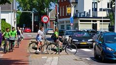 Traffic (Steenvoorde Leen - 8.5 ml views) Tags: velo bike cycle fahrrad fiets verkeer traffic utrechtseheuvelrug 2018 ycling fietsen