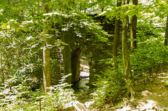 Poinsett Bridge III (rschnaible (On Holiday)) Tags: the south carolina blue ridge mountains outdoor landscape woods forest history historic building architecture old circa 1820 stone bridge poinsett