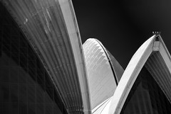 So the day will begin again (.KiLTRo.) Tags: sydney newsouthwales australia au kiltro lines curves geometry architecture structure operahouse abstract líneas geometría art
