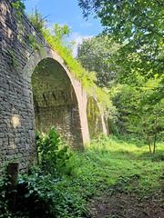 Purton Bridge (R~P~M) Tags: purton lydney glos gloucestershire england uk unitedkingdom greatbritain forestofdean bridge viaduct train railway tramway disused abandoned ruin