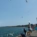 Crabpotting at Bandon Boardwalk