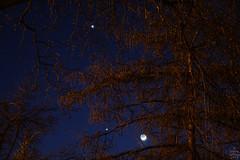 Venus-Jupiter-Moon / @ 55 mm / 2012-03-25 (astrofreak81) Tags: venus moon jupiter luna mond stars sky dresden