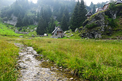 Vranica mountain, Bosnia and Herzegovina (HimzoIsić) Tags: landscape creek stream nature water outdoor grassland grass forest mountain mountainside mountaineering countryside rural house hill